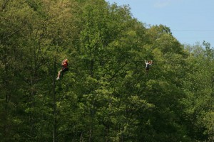 Zippin in the Trees